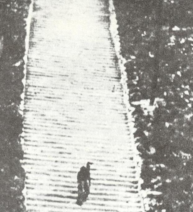 mauthausen_escales