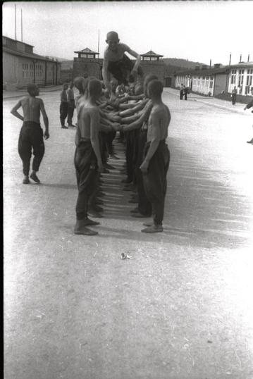 Mauthausen: Els deportats