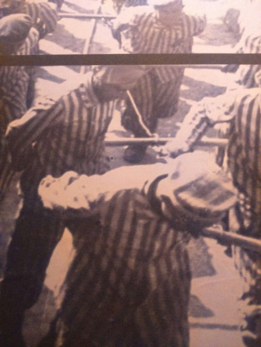 Mauthausen Josep ferrer (Copiar)
