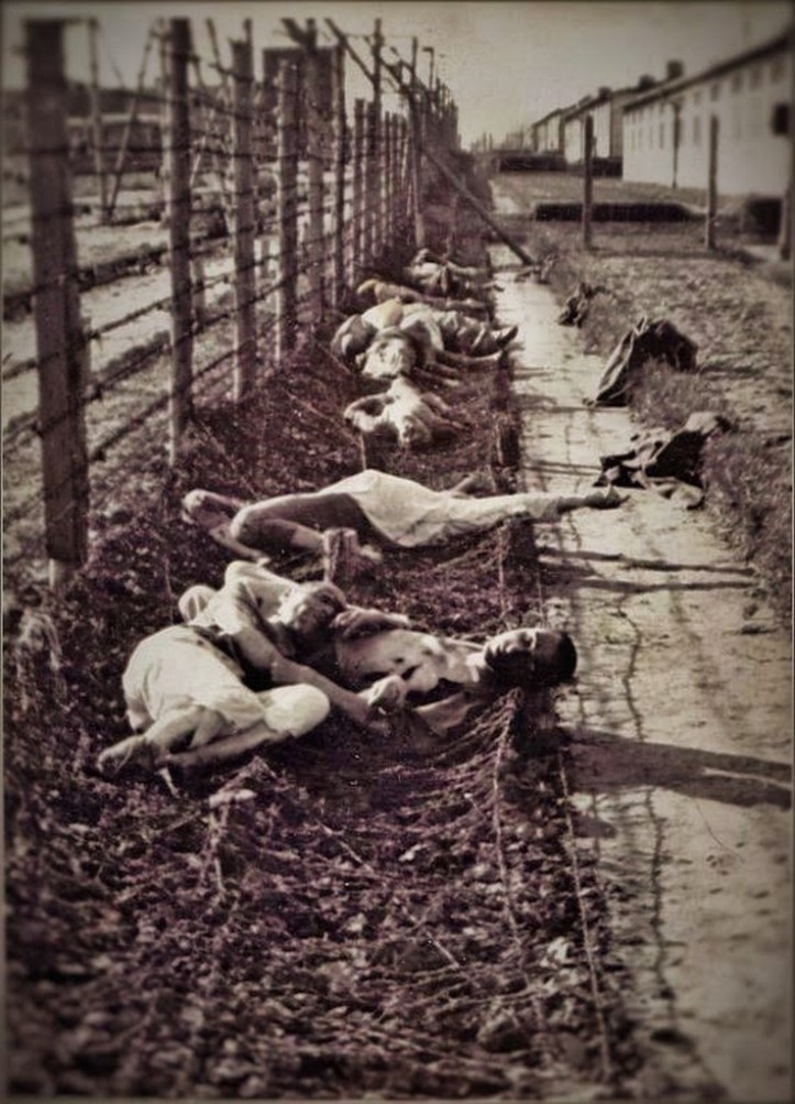 A Murdered along the barb wire at Mauthausen (2) (Copiar)