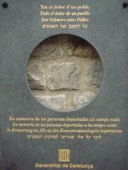 DSC02541 (Copiar)