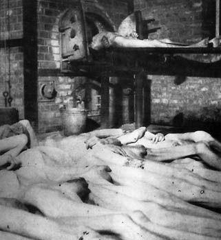 prisioneros-espanoles-mauthausen-cadaveres-incineradora